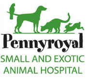 Pennyroyal Small And Exotic Animal Hospital Veterinarian In Lexington Ky Us